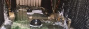 冷卻水塔水循環系統保養生物製劑